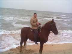 Конные прогулки - иппотерапия! фото